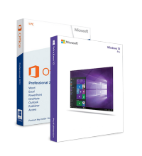 Windows 10 Professional + Office 2013 Professional ESD
